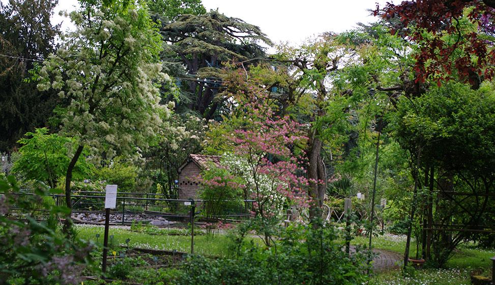 L'Orto botanico di Ferrara compie 250 anni Le celebrazioni coinvolgono cittadini e territorio
